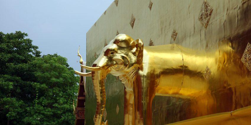 Chiang Mai, des temples, des marchés et des éléphants !