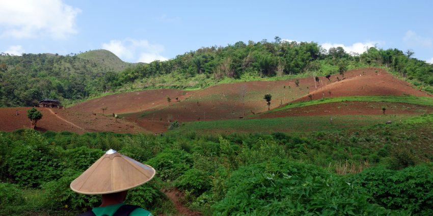 Trek à Hsipaw, au milieu de la nature !