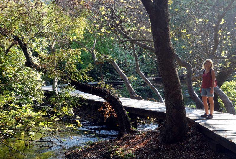 krka national park croatie cascades automne