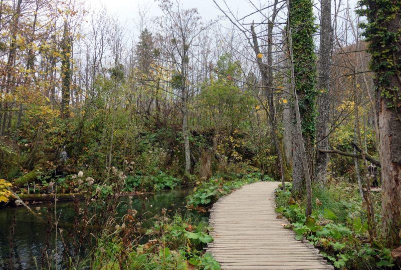plitvice national park croatie automne