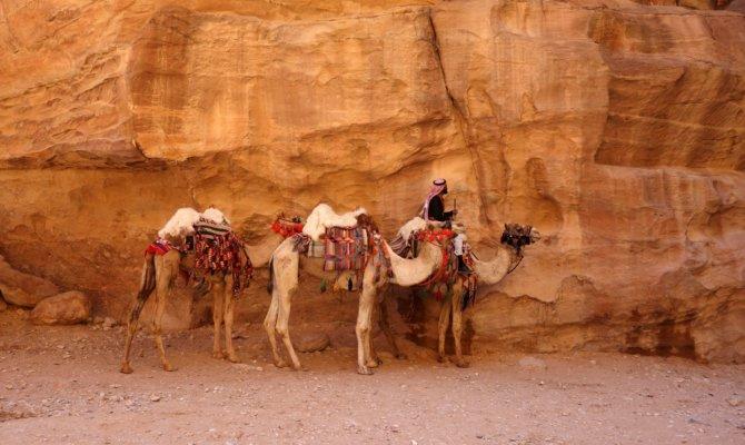 Le centre de la Jordanie, de Dana à Petra !