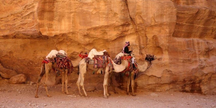 Le centre de la Jordanie, de Dana à Petra à pied !