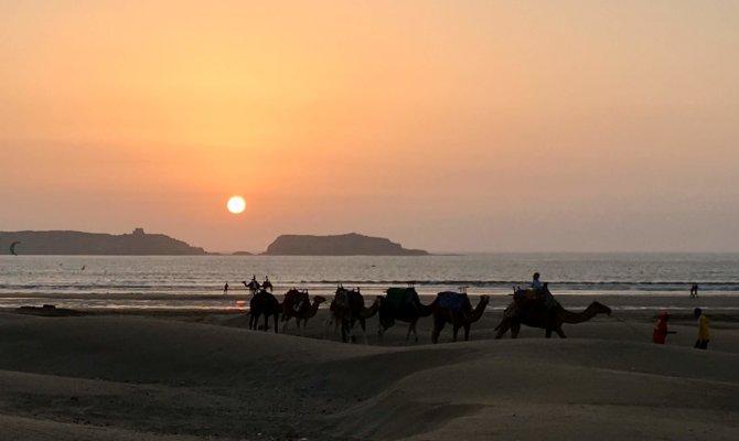 La côte d'Essaouira à Aourir : Imsouane, Taghazout, Tamraght
