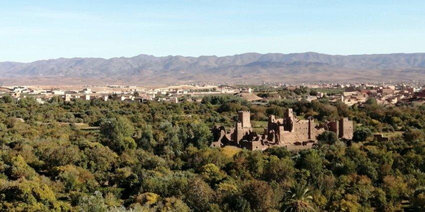 Ouarzazate, Oasis de Fint et vallée de Dades