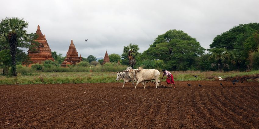 Les temples de Bagan, c'était merveilleux !
